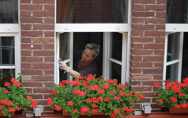 čištění oken